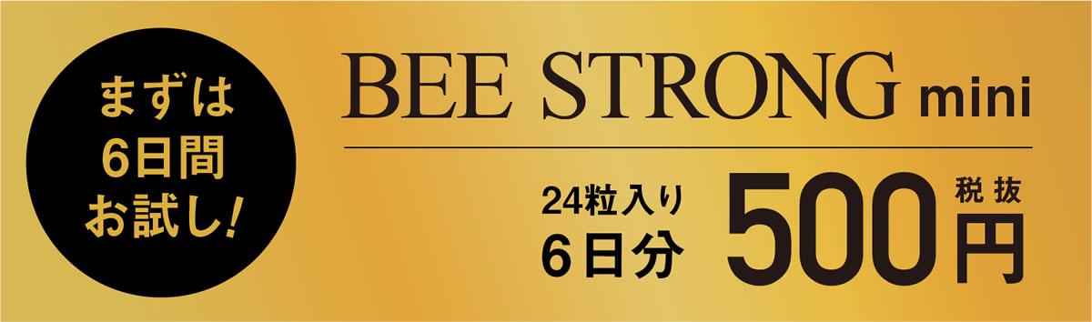 ミットネスオリジナルプロテイン「BEE STRONG」販売開始!